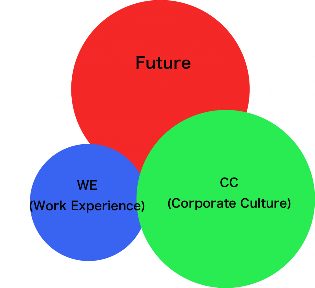 work-experience